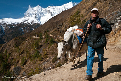 Everest-Base-Camp-Lifestyle-Nepal-Himalayas-8