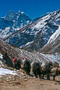 Everest-Base-Camp-Lifestyle-Nepal-Himalayas-13