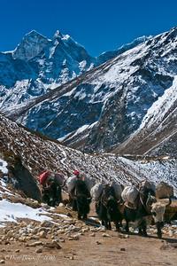 Everest-Base-Camp-Lifestyle-Nepal-Himalayas-13