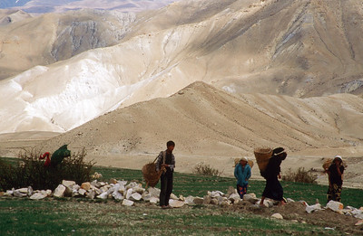 Farm workers near Lo Manthang