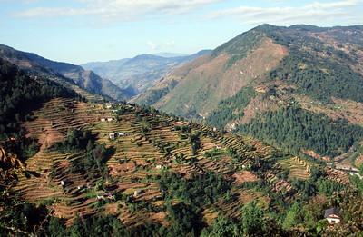 Sangbadanda farming terraces