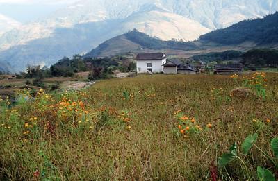 Bhandar (7,218 ft).  Farm house