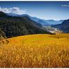 Fields above Phedi, Annapurna Sanctuary Trail exit