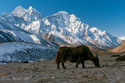 Everest-Base-Camp-Trek-Nepal-7