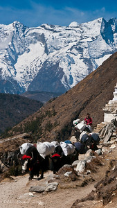 Everest-Base-Camp-Trek-Nepal-5