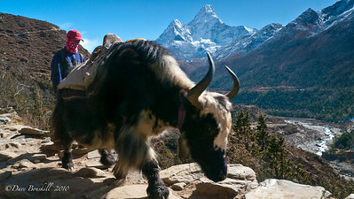 Everest-Base-Camp-Trek-Nepal-4