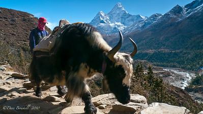 Everest-Base-Camp-Trek-Nepal-4