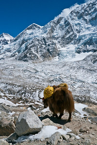 Everest-Base-Camp-Trek-Nepal-9