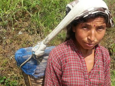 Nepali hauling