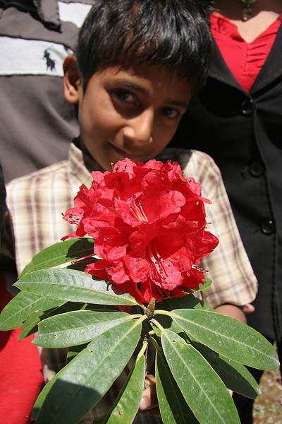 The rhododendron is the national flower of Nepal. This family of 5 were driving 7 hours to their home town to vote in the upcoming parliamentary elections, which the Maoists ultimately won the biggest majority (more than a third). They stopped by the road to pick flowers and gave this one to us.