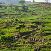 CB_Nepal_14-110