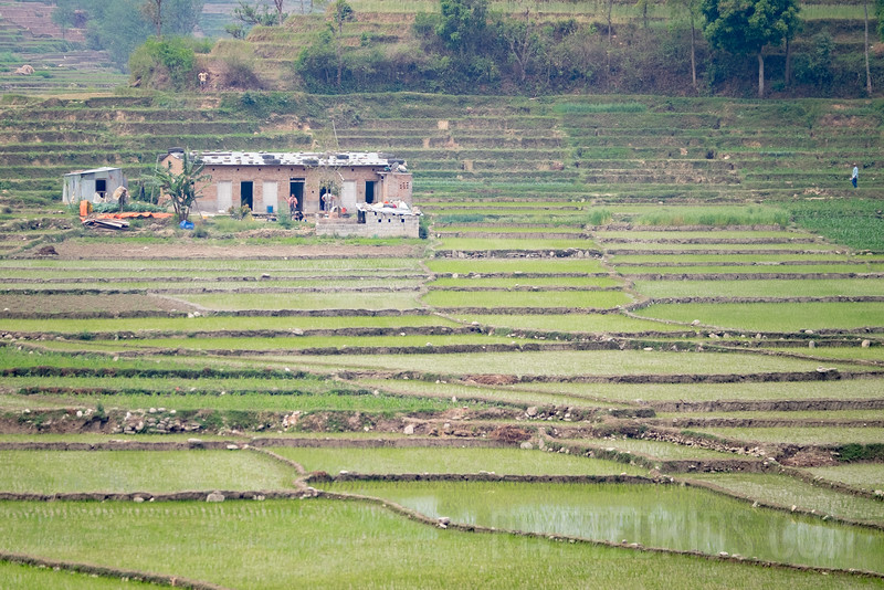 Nepal 013(20150404-DSCF9970)