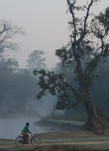 Morning in Bardia National Park western Nepal.