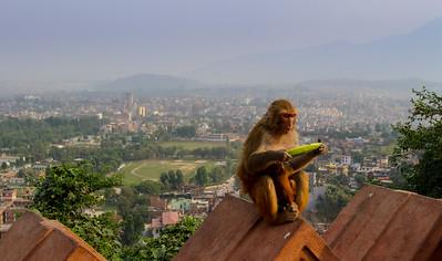 CB_Nepal_14-105