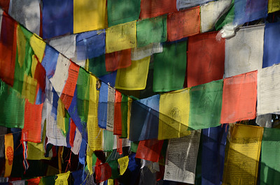 Prayer flags in Lumbini, Nepal (birthplace of the Siddhartha, who became the Buddha)