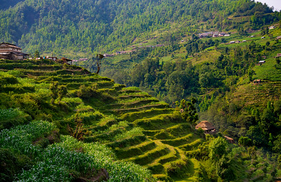 CB_Nepal_14-117