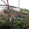 Prayer flags everywhere