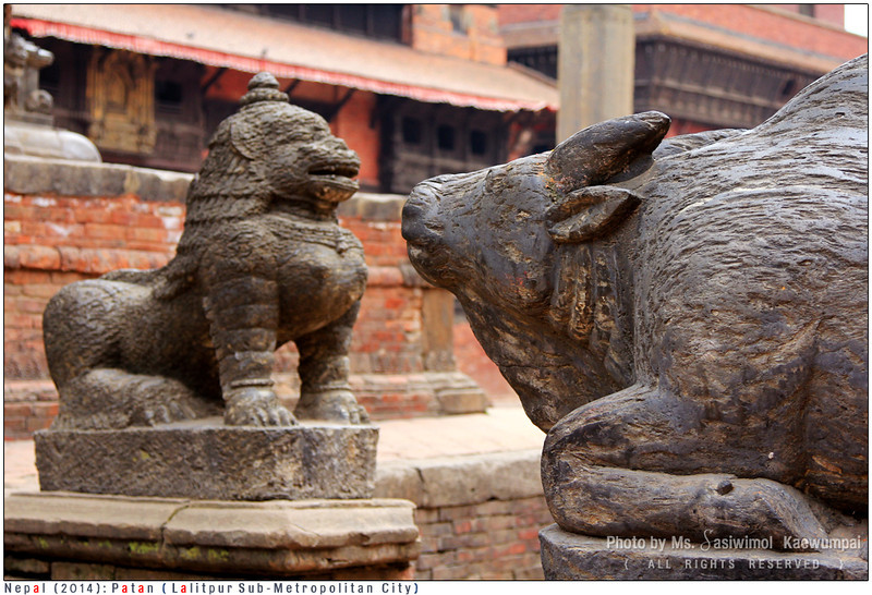 Facing each other - Statue of Nandi (calf)