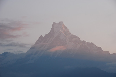 175 - Sunrise Machapuchare