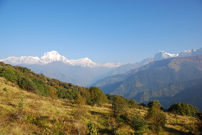 239 - Dhaulagiri and Nilgiri