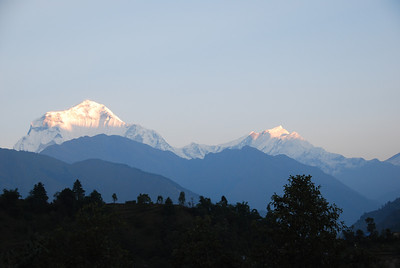 267 - View of Dhaulagiri  from the room