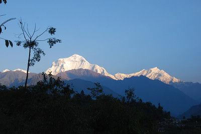 271 - Dhaulagiri and Tukuche