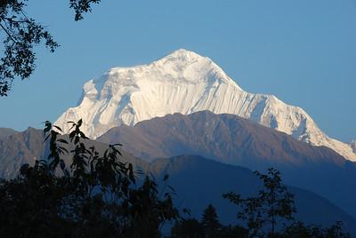 273 - Dhaulagiri