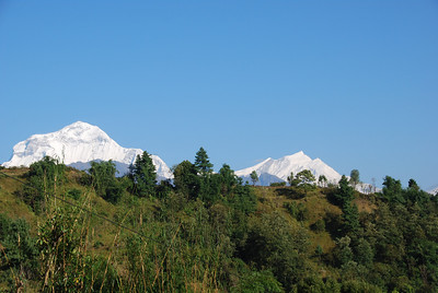 278 - Dhaulagiri and Tukuche
