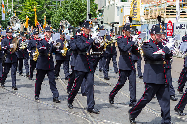 Nederlandse Veteranendag 2013