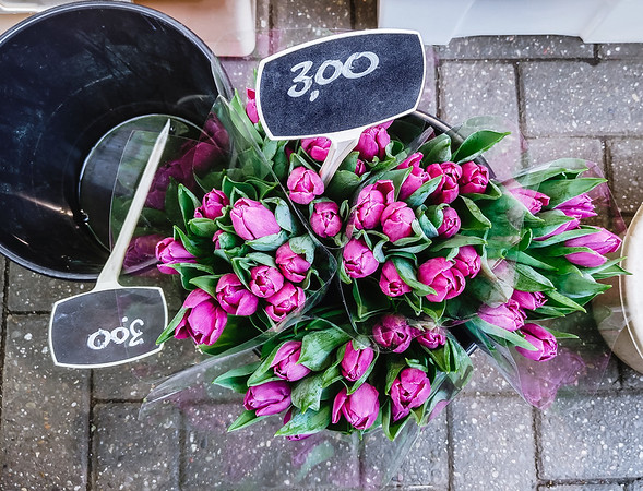 Tulips for sale at Bloemenmarkt, Amsterdam's flower market.