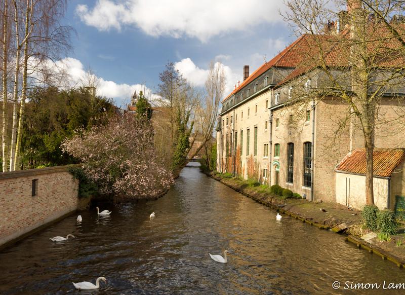 Bruges_15 04_4502495