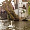 Bruges_15 04_4502492