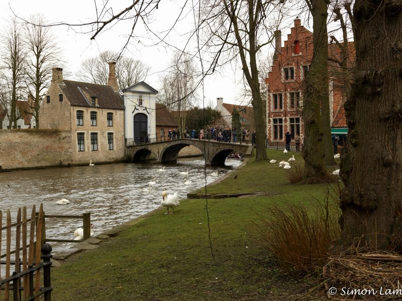 Bruges_15 04_4502359