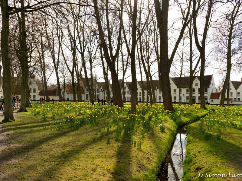 Bruges_15 04_4502500
