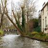 Bruges_15 04_4502434