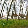 Bruges_15 04_4502509