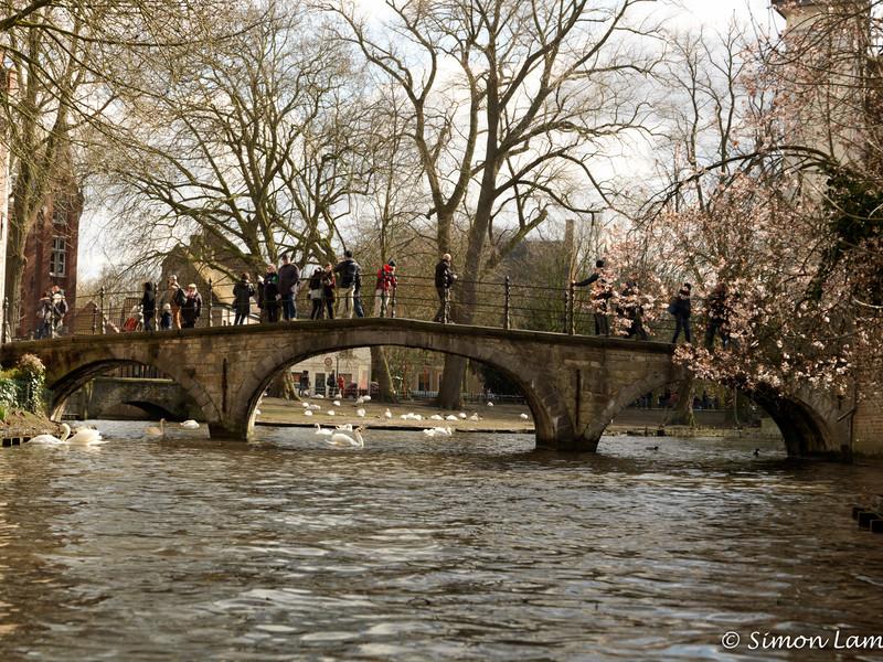 Bruges_15 04_4502436