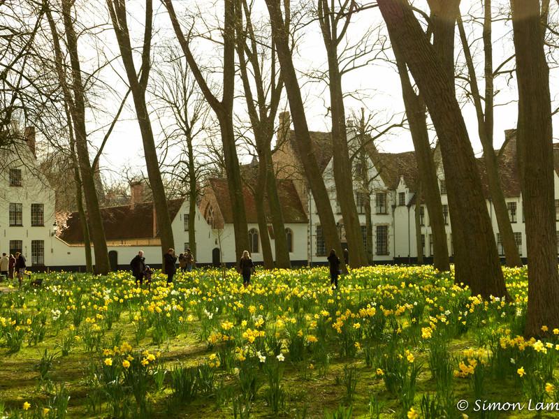 Bruges_15 04_4502498
