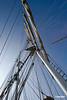 Sail_05_2208