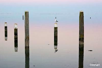 Reflections_Terschelling_07_0502