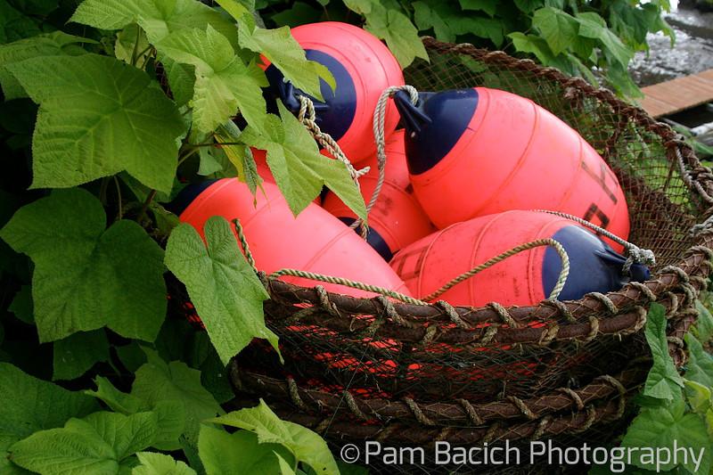 A Bushel of Buoys