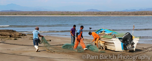 Preparing the Nets