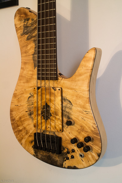 Joe Gridl - Snow Owl Bass-0143