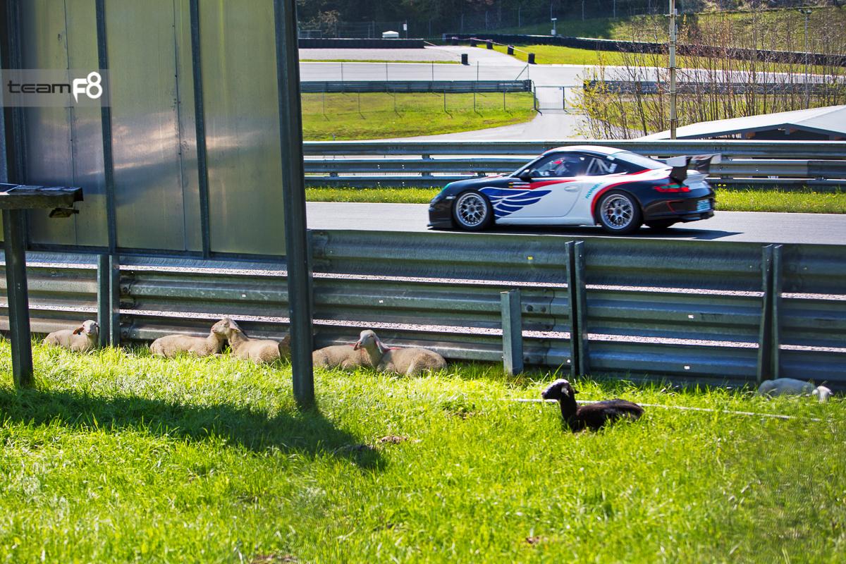 074_test_&_training_pzi_salzburgring_2016_photo_team_f8