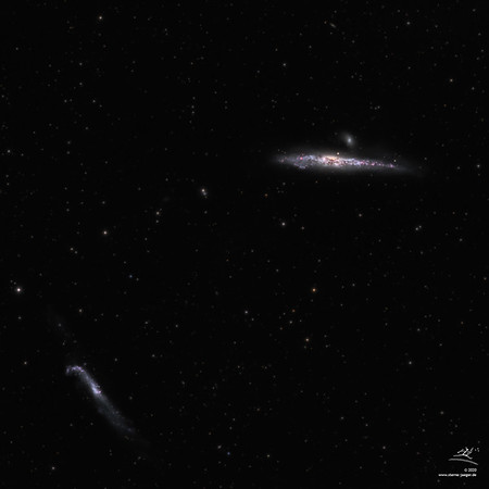 NGC 4631 Walgalaxie und NGC 4656/57 Hockey Stick Galaxie