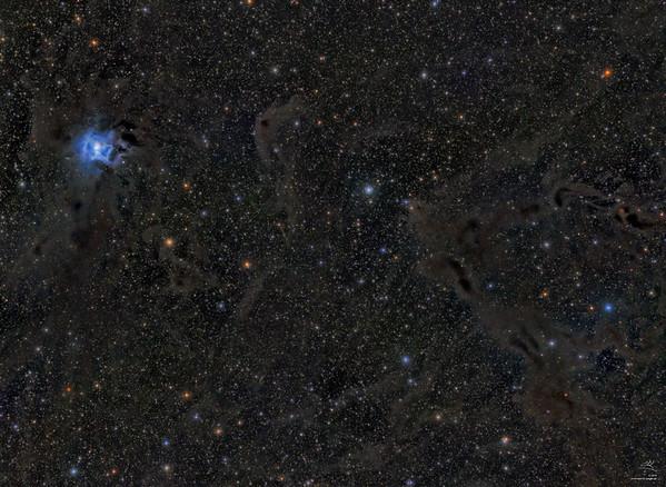 NGC 7023 (Irisnebel)
