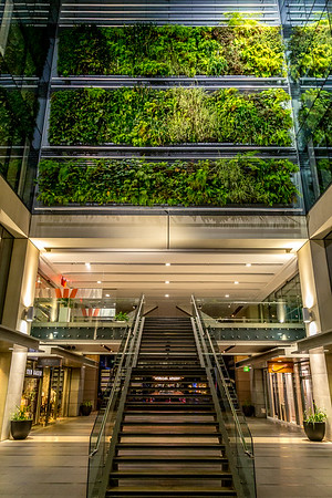 Vertikale Pflanzen im Britomart Einkaufszentrum