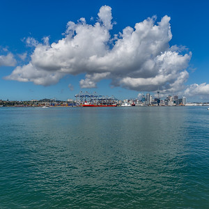 MANIMONDO: Auckland