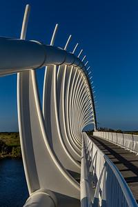 «Te Rewa Rewa Bridge» in New Plymouth