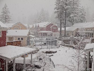 Snow falling at NC Coho, Mar. 18, 2011